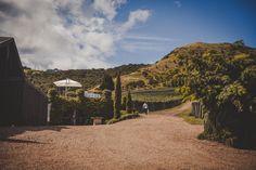 Italian lunch style wedding on Waiheke Island - a great wedding location! Italian Lunch, Waiheke Island, Italian Traditions, Island Weddings, Wedding Locations, Magnolia, Lush, Wedding Photography, Style