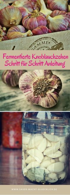 Fermented clove of garlic recipe - Fermented garlic – a step-by-step guide to fermenting yourself! Fermented cloves of garlic as a s - Garlic Recipes, Raw Food Recipes, Fruit Plus, Home Grown Vegetables, Grain Foods, Meal Deal, Fermented Foods, Different Recipes, Diy Food