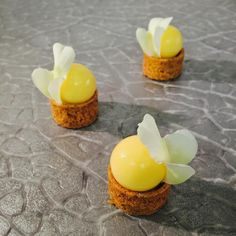 #new #friandises #yuzu #pearls #vanilla #flowers #restaurant #latour #noordwijk #grandhotelhuisterduin #pastry #pastychef #finefood…