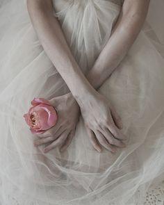 roses in my hands by monia merlo