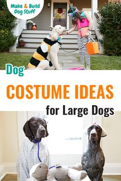 If you have a large dog and would like to dress them up in some creative costumes, check out these big dog costume ideas. #DIYdog #Dog #DogFun #DogIdeas #DogStyle