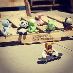 Since today is go skateboarding day Orange-Utan showed off some tricks to the other Smanimals.