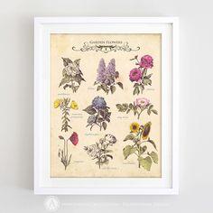 Botanic Illustration Print Wall Art - Printable Antique Botanical poster - Vintage Garden Flowers - DIGITAL INSTANT DOWNLOAD (8.00 USD) by AmeliyCom