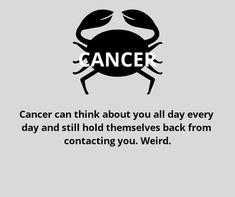 Cancer zodiac, Cancer Woman, Cancer Sextrology, Cancer compatibility, Ca… Horoscope Du Cancer, Cancer Zodiac Facts, Cancer Quotes, Zodiac Horoscope, Cancer Zodiac Personality, Cancer Zodiac Women, Cancer Traits Woman, Zodiac Signs Cancer Compatibility, Daily Horoscope