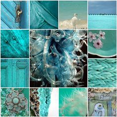 just shades of blue