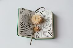 sketchbook no.21 by oanabefort, via Flickr