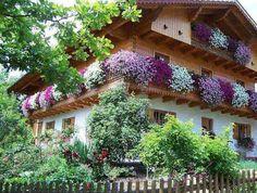 AD-Spectacular-Balcony-Garden-6.jpg 600×453 pixels