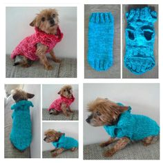 12 Beste Afbeeldingen Van Dog Sweater Hondentrui Dog Sweaters