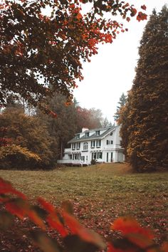 "salboissettphoto: "" Found this vintage looking mansion during my autumn morning stroll ….I have a feeling that its haunted. ""By:Salvador Boissett "" """