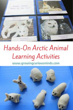 Studying about the Arctic? Need some new ideas to engage your child? Here are 4 hands-on arctic animal learning activities that will appeal to all types of learners. #arcticanimals #handsonlearning #teachermadebooks   via @growingcuriousminds