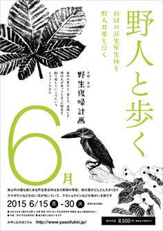 京都・美山 野生復帰計画 » 新緑の原生林を野人井栗と歩く