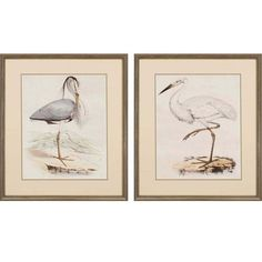 Antique Herons By Unknown: 28 X 24 Standard Framed Print, Set Of Two Paragon Wall Art Wall