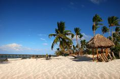 The luxury Dominican Republic resorts from Punta Cana and the best beaches in the area are available to you in this article. Find the suitable resort! Punta Cana, Royal Caribbean, Hotels And Resorts, Best Hotels, Destinations, Travel Companies, Find Hotels, Travel Information, Dominican Republic