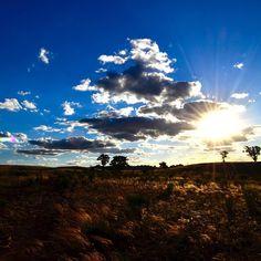 #sun #clouds #pasture