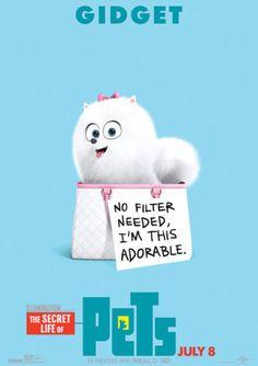 Secret-Life-of-Pets-Poster-GIDGET-Kids-Hit-Movie-2016-FREE-P-P-CHOOSE-YOUR-SIZE