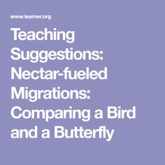 Teaching Suggestions: Nectar-fueled Migrations: Comparing a Bird and a Butterfly