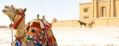 Maroc  © Elisabeth Simard