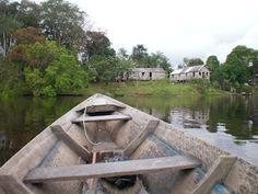 Roteiros da Lu: Dois dias inesquecíveis na selva - Parte I