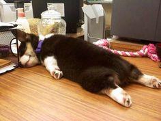 Ombligo de semana y muero de sueño en la oficina =/