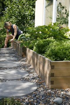 Types Of Urban Gardening - Urban Gardening Garden Types, Terrace Garden, Edible Garden, Garden Spaces, Vegetable Garden, Easy Garden, Patio Pergola, Backyard Landscaping, Raised Garden Beds