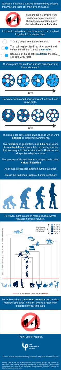 If Someone Is Holding A Sign And Yelling About Evolution, Chances Are They're Confused About This
