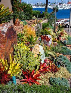 DSC_0492 Landscape design, installation, and photo by Michael Buckner, The Plant Man, San Diego.