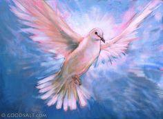 John 16: White Spirit Dove In Flight