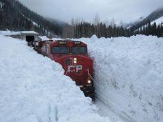 Amazing Photo: Snow Tracks - Neatorama