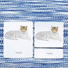While we love the gentle, graceful flamingo, some of the young adventurers out there might prefer the proud tiger. He lounges with a piercing gaze as your children learn body part vocabulary. Lounges, Card Sizes, Kids Learning, Your Child, Montessori, Vocabulary, Flamingo, Piercing, Hand Painted