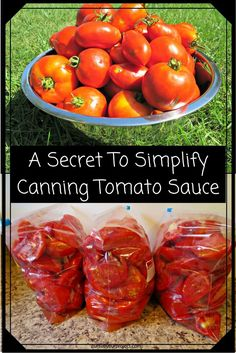 A simple tutorial about freezing tomatoes to make canning your tomato sauce…