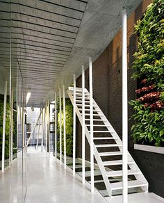 Fragile Lab green wall white stairs