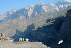 Alone in mountains #Yagnob, #Tajikistan