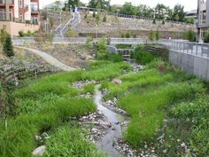 Thornton Creek Water Quality Channel lower channel and weir | Flickr - Photo Sharing! by svrdesignco