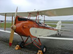 Gipsy Moth. What a beauty!