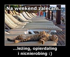 tak odpoczywam, fajne memy na niedzielę i sobotę o odpoczynku z kotem, leżenie bykiem, niedziela dniem relaksu, śmieszne obrazki, koty na niedziele, pozytywne cytaty o niedzieli i sobocie, chillout niedzielny - kliknij po więcej!