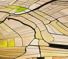 Image: Paddy fields in Donglan County, China (© REX FEATURES)
