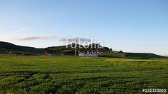 Paisajes veraniegos #fotolia #sold #photo #Photo #photography #design #photographer #Landscapes #summer #green #fields #roads #colorful