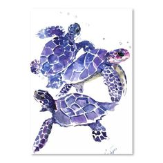 Shop Wayfair for Americanflat 'Sea Turtles' by Suren Nersisyan Painting Print - Great Deals on all Decor products with the best selection to choose from! Sea Turtle Painting, Sea Turtle Art, Sea Turtles, Frames On Wall, Framed Wall Art, Framed Art Prints, Painting Frames, Painting Prints, Paintings