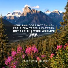 """""""The sun does not shine for a few trees and flowers, but for the world's wide joy."""" - Henry Ward Beecher"""