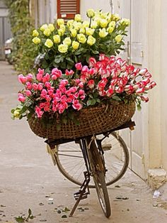 Ana Rosa / basket of flowers for delivery My Flower, Fresh Flowers, Flower Power, Pink Flowers, Beautiful Flowers, Pink Roses, Pretty Roses, Yellow Roses, White Roses