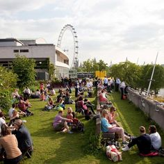 Southbank Centre London's Queen Elizabeth Hall Roof Garden, a rooftop bar and cafe with views over the Thames, native plants – a green space in central London Days Out In London, Things To Do In London, New York City Travel, London Travel, Travel Uk, Places In New York, London Places, New York Rooftop, Rooftop Bar