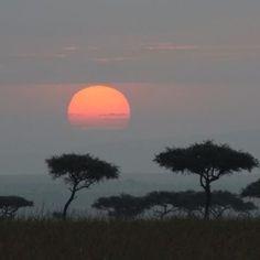 Sunrise at Kichwa Tembo, Kenya