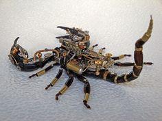 Steampunk Clockpunk Mechanical Bugs Sculpture  By Dmitriy Khristenko