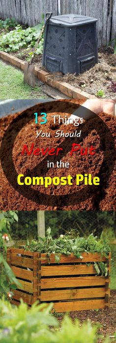 Do you know what not to compost? You can compost almost any item but there are 13 things you can't compost. Find out!