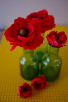 Wizard of Oz Poppies