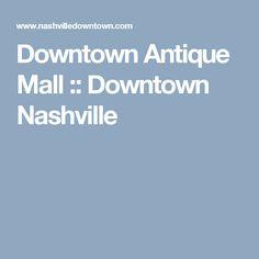 Petty v. Metropolitan Gov't of Nashville & Davidson County Essay Sample