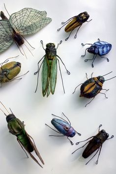 Andrea Uravitch - textile bugs