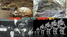미스터리 초대형 거인 네피림의 증거 Evidence of a mystery super giant Nephilim