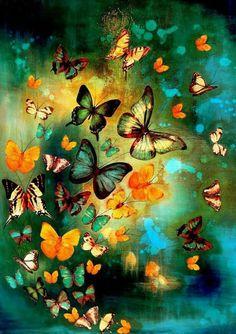 The Art Market: Lily Greenwood - mix media. Las mariposas son flores que vuelan. Butterfly Painting, Butterfly Wallpaper, Butterfly Art, Butterfly Shirts, Butterfly Crafts, Art Papillon, Green Craft, Beautiful Butterflies, Butterflies Flying