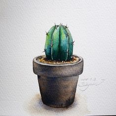 gallery (disambiguation) A rogues' gallery is a collection of images used by police to identify suspects. Rogues' gallery or rogues gallery may also refer to: Succulents Drawing, Cactus Drawing, Cactus Painting, Watercolor Succulents, Plant Painting, Watercolor Cactus, Cactus Art, Plant Art, Watercolour Painting